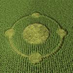 3d Crop Circle