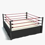 3d Wrestling Ring