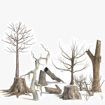 3d Dead Trees and Plants Models