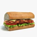 3d Sub Sandwich Half Model