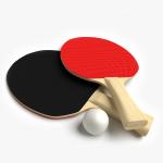 3d Ping Pong Paddles