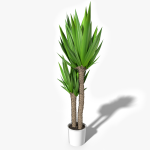 3d Interior House Plant model