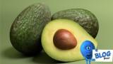 3d Avocados Model