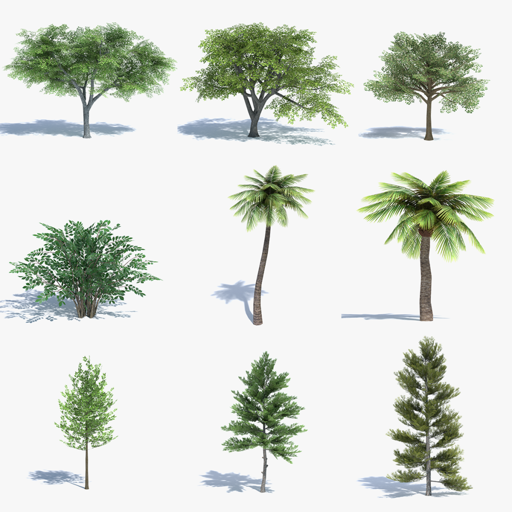 3d Low Poly Trees Set