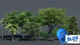 3d Low Poly Trees Set